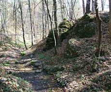 Rezerwat przyrody Dolina Potoku Rudno