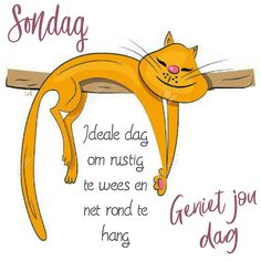 Goeie Nag, Goeie More, Afrikaans Quotes, Happy Sunday, Birthday Wishes, Quote Of The Day, Good Morning, Bible, Van