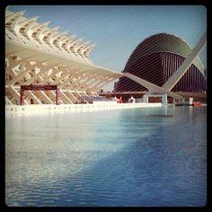 L'acquario più grande d'Europa, a Valencia