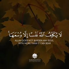 Best Islamic Quotes, Quran Quotes Love, Muslim Quotes, Inspirational Quotes About Success, Morning Inspirational Quotes, Islamic Inspirational Quotes, Quran Urdu, Islam Quran, Recitation Of Quran