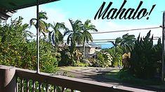 Just Mahalo