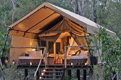 raised tent glamping
