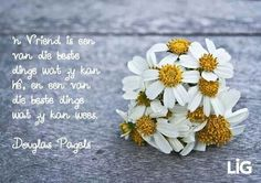 N vriend Day Wishes, Afrikaans, Floral, Flowers, Poems, Friendship, Vans, Thoughts, Quotes