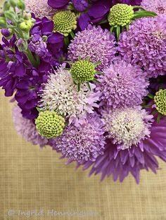 Dahlias, Scabiosa and Stock Flowers.  Styling and Photography © Ingrid Henningsson/Of Spring and Summer, http://ofspringandsummer.blogspot.co.uk/