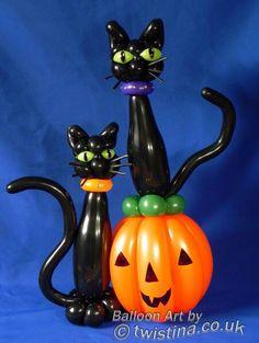 Halloween black cats and pumpkin