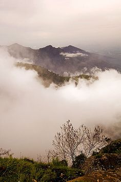 Ooty - Queen of hill stations in India.