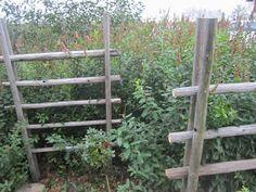 Pin on Heinäseipäät Garden Structures, Outdoor Structures, Dream Garden, Home And Garden, Cottage, Gardening, Outdoors, Gardens, Apartment Master Bedroom