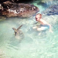 Turtle Point, Hapuna Beach. Big Island, Hawaii.