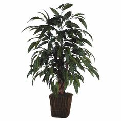 Vickerman 4' Artificial Mango Bush in Square Willow Container * You can get additional details at the image link.