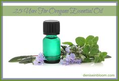 25 Uses For Oregano Essential Oil