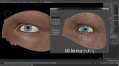 Realistic Eye rig on Vimeo