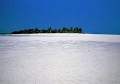 madagascar est réputé pour sa faune et sa flore hors du commun, au sein d'une