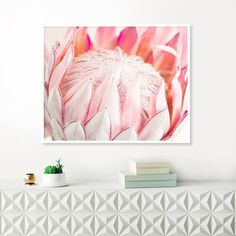 Check out our protea photograph selection for the very best in unique or custom, handmade pieces from our shops. Protea Art, Protea Flower, Pink Flower Photos, Dining Room Table Centerpieces, Botanical Wall Art, Pallet Art, Floral Watercolor, Watercolour Painting, Printable Wall Art