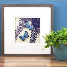 Bring the outside into your home with this unique Irish collection of original glass paintings inspired by nature Common Blue Butterfly, Peacock Butterfly, Butterfly Bush, Irish Pottery, Irish Design, Garden Studio, Irish Art, Light And Space, Yellow Sunflower