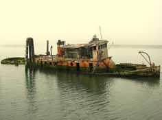 Wreck of the Mary D. Hume  At the mouth of the Rogue River, Gold Beach Oregon. Built here in  1881, returned here for restoration in1978, at which point several  things went badly awry, and now she is slowly rotting away beside the  US Hwy 101 Patterson Bridge.