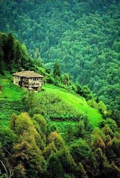 DAĞLICA KÖYÜ / BEŞİKDÜZÜ / TRABZON Turkish Delight, Beautiful World, Beautiful Places, Most Beautiful, Homeland, Mother Nature, Visit Turkey, Best Cities, Paradise