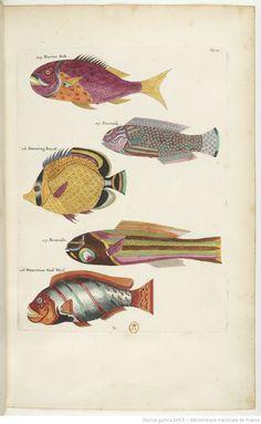 """tous les poissons de pêche Leurre. Nouveau Crafted 2 x 2 3//4/"""" Vert Crusty crabe"""