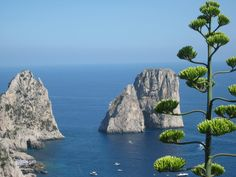 ...a view from Capri!