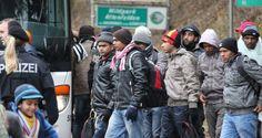Asylbewerber-Klagewelle gegen Bamf droht – Contra Magazin