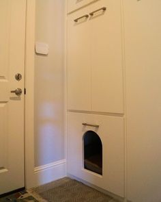 Pet Accessories Design Ideas Pictures Remodel and Decor & hidden litter box in the garage with a cat door into the house ... Pezcame.Com