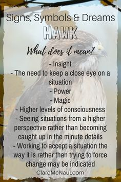 When Hawk comes you can expect a lot of spiritual symbolism and guidance. Has hawk presented in your dreams or psychic and mediumship readings? Here are some possible interpretations to consider. Animal Symbolism, Animal Meanings, Hawk Spirit Animal, Your Spirit Animal, Dream Interpretation Symbols, Dream Psychology, Facts About Dreams, Dream Symbols