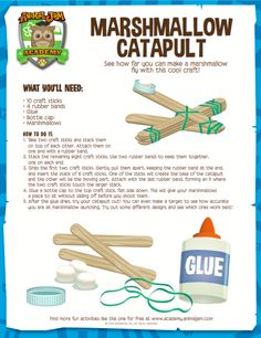 Test out your engineering skills by making this awesome marshmallow catapult from Animal Jam Academy! Instructions are free to download and print out! Have fun and #playwild!