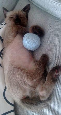 ...my best friend and sleeping me!