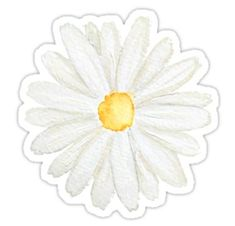 """""""white cosmos flowers ink and watercolor"""" Sticker by ColorandColor Bubble Stickers, Cool Stickers, Printable Stickers, Laptop Stickers, Journal Stickers, Scrapbook Stickers, Planner Stickers, Homemade Stickers, Cosmos Flowers"""
