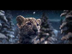 Cartier Winter Tale - adorable jewelry commercial