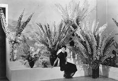 gardenhistorygirl: Edward Steichens Garden History