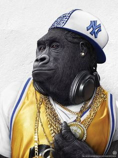 Image detail for -Gangster Gorilla - Monkeys Photo - Fanpop fanclubs King Kong, Monkey Style, Monkey Art, Photos Singe, Funny Monkey Pictures, Photo Humour, Funny Animals, Cute Animals, Pet Clothes