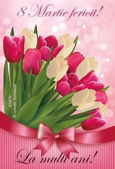 White Tulips, Pink Tulips, Pink Flowers, Beautiful Roses, Colorful Flowers, Beautiful Flowers, Happy Birthday Beautiful, Happy Birthday Images, My Flower