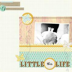 This Little Life by erin stewart @2peasinabucket