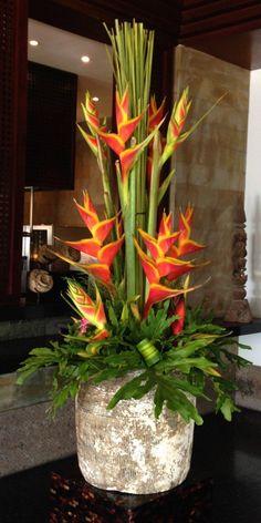Heliconias, The Legian Hotel, Bali – My Own Photograph Heliconias, The Legian Hotel, Bali – Meine eigene Fotografie Tropical Flower Arrangements, Flower Arrangement Designs, Church Flower Arrangements, Beautiful Flower Arrangements, Beautiful Flowers, Exotic Flowers, Large Flowers, Tropical Flowers, Tropical Garden