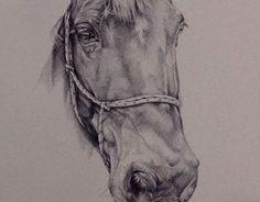 Ink Horse Portrait
