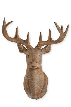 Buy Wooden Effect Stag Head Wall Plaque from the Next UK online shop