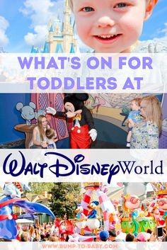 Find out which rides and attractions your toddler will love during their trip to Walt Disney World!