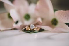 Sam Stroud Photography | solitaire diamond with gold band