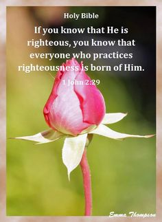 1 JOHN  2:29 - If ye know that He is righteous, ye know that every one that doeth righteousness is born of Him.  KJV