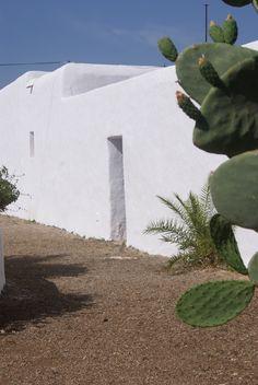 Can pinya ,, en Ibiza