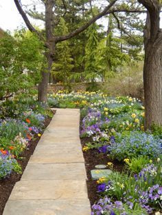 A spring garden: I Love the path and the  spring flowers. This is what we wait all winter for.
