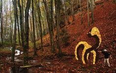 «Край земли» фотовыставка в стиле  Land Art.(21 фото)