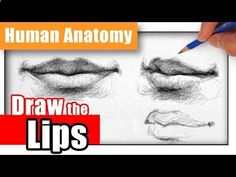 Delineate Your Lips How to Draw the Lips the Easy Way - Different Angles - YouTube - How to draw lips correctly? The first thing to keep in mind is the shape of your lips: if they are thin or thick and if you have the M (or heart) pronounced or barely suggested.