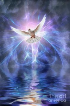 Harbinger Poster by John Edwards Image Jesus, Jesus Christ Images, Jesus Art, Dove Pictures, Angel Pictures, Jesus Pictures, Heaven Pictures, Beautiful Angels Pictures, John Edwards