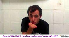 Del 1 al 15 de octubre de 2014, #LanzaUnBesoPor la Fundación Josep Carreras. Si quieres colaborar, sólo has de mandar un SMS con el texto 'NoLeucemia' al número 28027 (coste 1,20€), y donarás el coste íntegro del mismo a la Fundación. Además, si nos enseñas el SMS de vuelta podrás disfrutar en nuestras heladerías de un Alberto Moka Blanco por sólo 1 €.  Ramsés Vollbrecht nos envía su mensaje  www.valencianashock.com