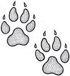bear footprints template - wolf paw print pattern use the printable outline for