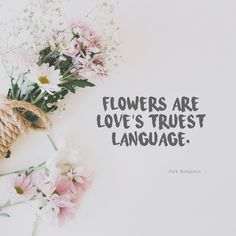 flirting quotes pinterest images flowers quotes pictures