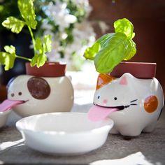 Vasi auto innaffianti - Peropon Animal Flower, simpatici animaletti con il pollice verde. Portano una boccata d'ossigeno in casa tua e Pensano a tutto loro!