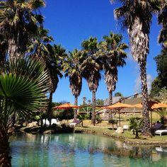 Indian Springs Resort & Spa in Calistoga, CA