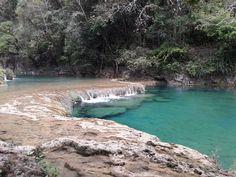 Mon reportage sur Semuc Champey est en ligne. 5 jours dans la brousse guatémaltèque, et toutes les infos dont vous avez besoin pour votre séjour dans cette merveille naturelle => http://goo.gl/gdVsrn #Guatemala #Lanquin #Voyage